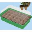 Mini serre avec pots biodégradables