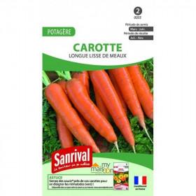carotte longue lisse de meaux