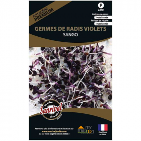 Sachet de graines de germes de radis violets Sango