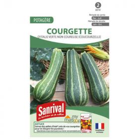 Sachet de 5 gr de graines de courgettes d'Italie.